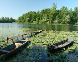 Природный парк Лоньское поле