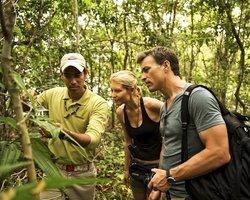 Прогулка по джунглям Амазонии