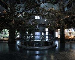 Лясковичи - Музей природы