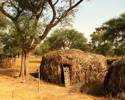 Дома в деревне Пель