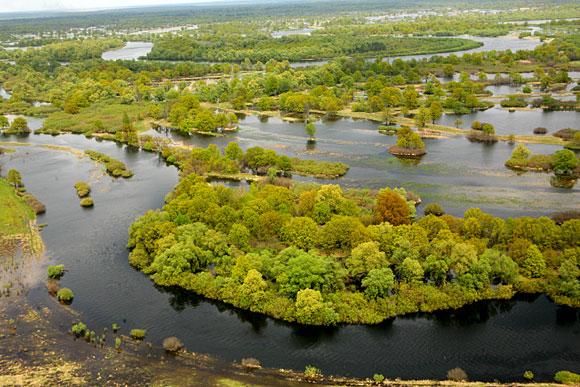 Национальный парк припятский